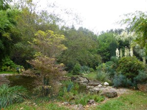 Parc Floral de la pépinière de la Grande Calinière