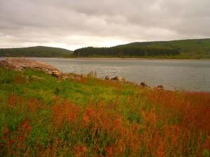Lac de Laouzas - plateau des lacs