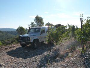 Haut-Lirou Winetour © M. Pagano-Médard